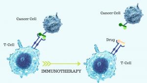 Immunotherapy Found Most Effective in Men